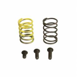 Fuel System & Components - Fuel Injection & Parts - Industrial Injection - 94-98 DODGE 12 VALVE AFC SPRING KIT